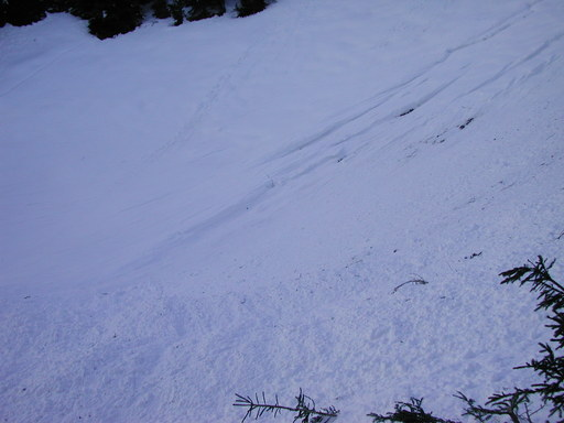 Taferna avalanche: erosion fracture lines due to fluidized part